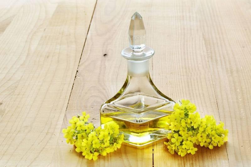 Рапсовое масло, польза и вред для организма