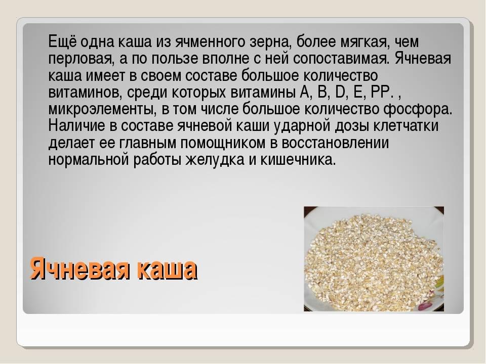 Обыкновенная перловка: польза и вред «жемчужной» крупы