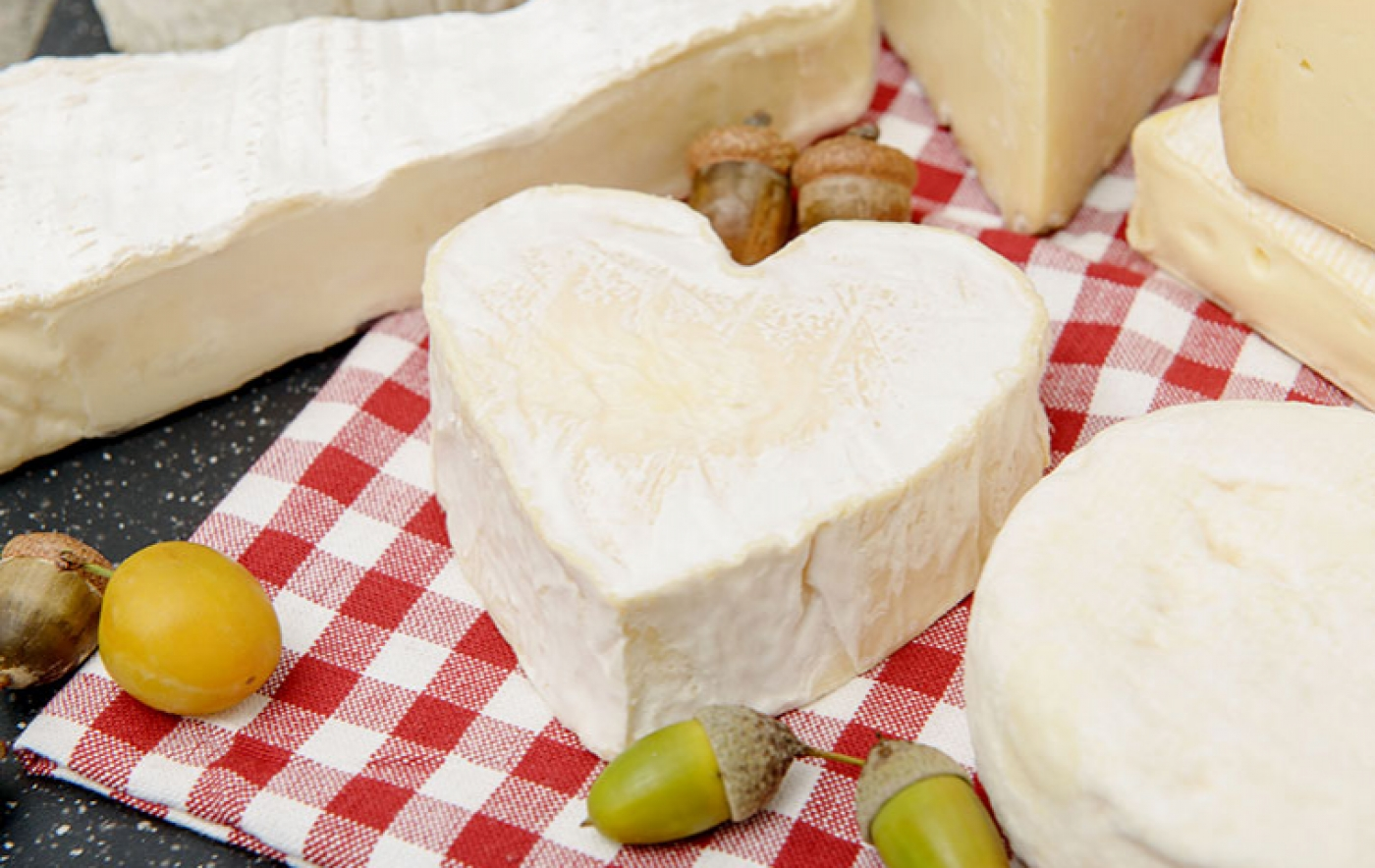 Сыр моцарелла: польза и вред