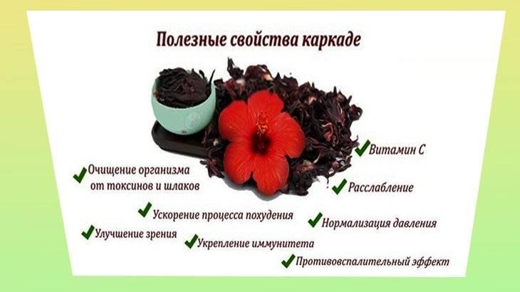 Польза и вред чая каркаде для организма