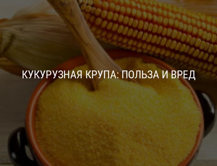 Кукурузная каша (крупа) — польза и вред для здоровья человека