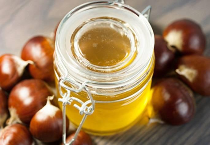 Полезные свойства каштанового мёда для всей семьи, возможные противопоказания
