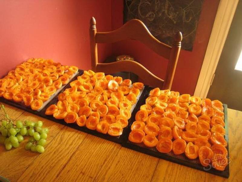 Как сушить абрикосы и не разочароваться