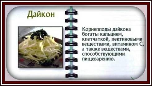 Польза дайкона и вред: показания и противопоказания к применению для организма человека (105 фото)