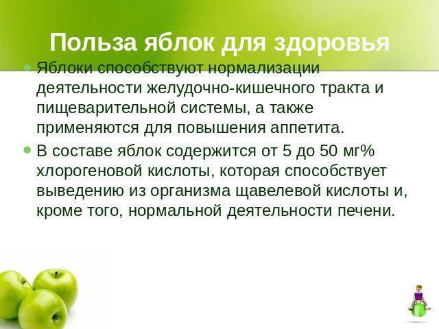 Яблоки – польза и вред для организма, рецепты народной медицины