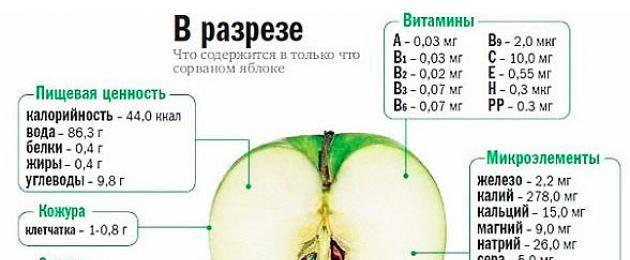 Можно ли зеленые или красные яблоки на ранних и поздних сроках беременности и кому стоит отказаться на время беременности от такого фрукта