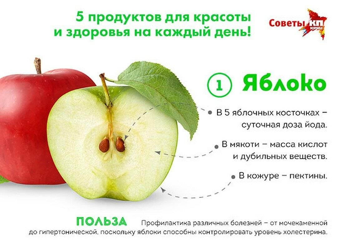 Яблоки, польза и вред для организма человека