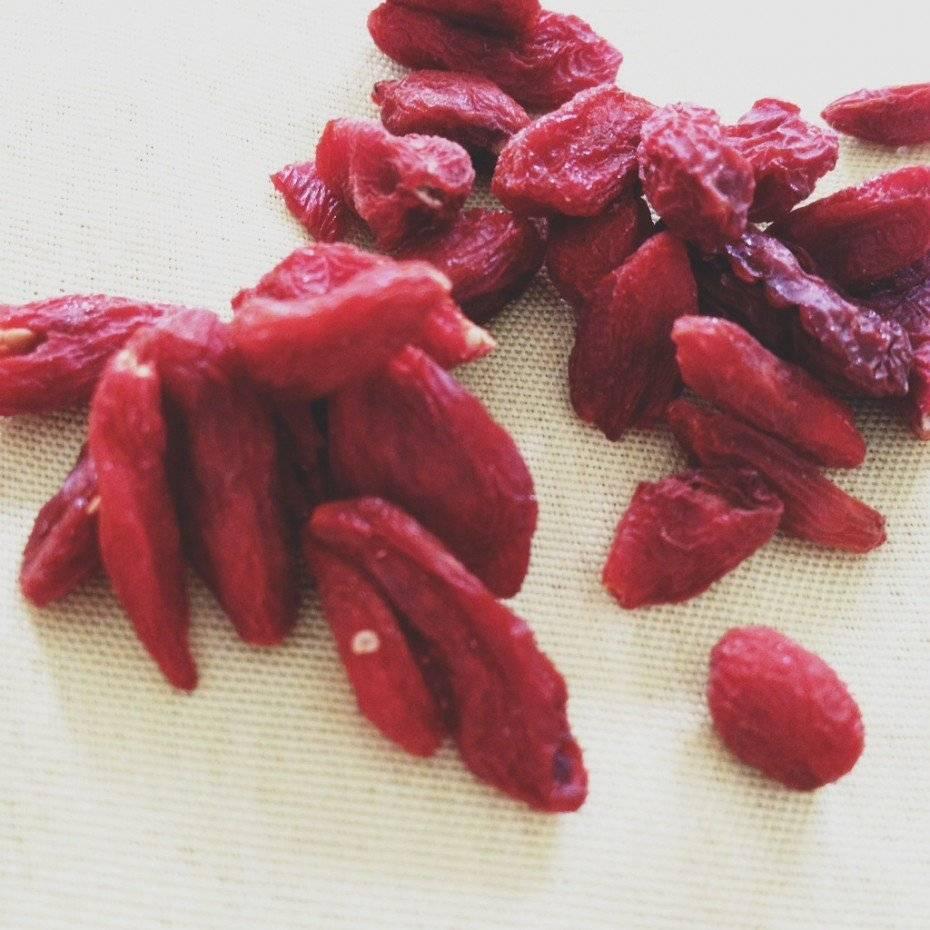 Тибетские ягоды годжи: польза и вред чудотворной ягоды