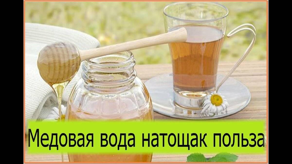 Вода с медом натощак: польза или вред?
