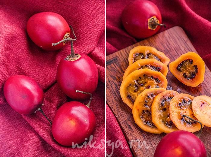 Чем полезны плоды томатного дерева или тамарилло?