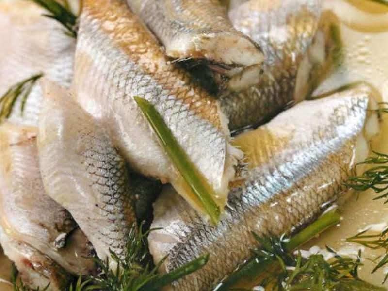 Корюшка – польза и вред, химический состав, как правильно хранить рыбку