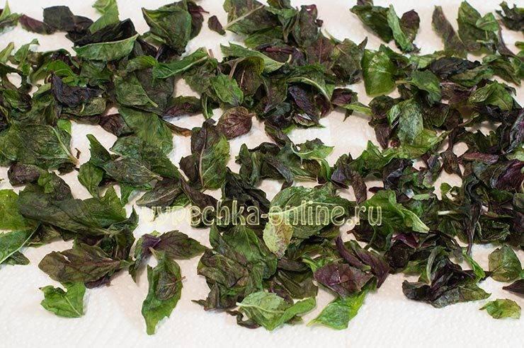 Можно ли сушить базилик с цветками. как сушить базилик, полезные свойства и применение в домашних условиях