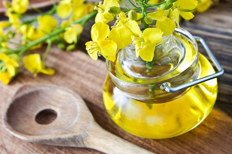 Рапсовое масло: полезные свойства и противопоказания