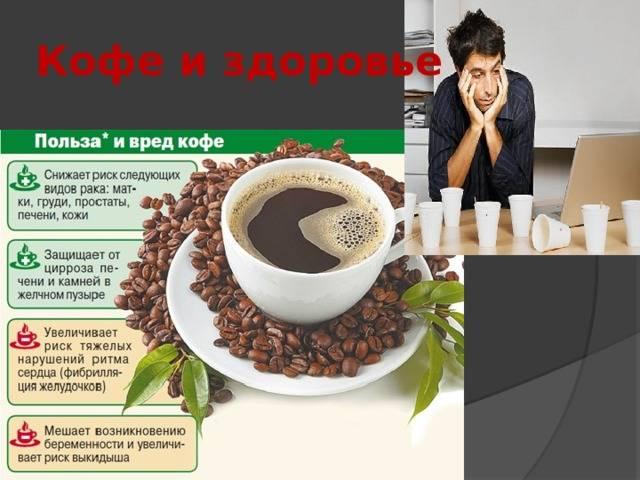 Кофе, польза и вред для здоровья человека
