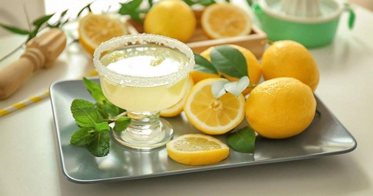 Лимонник — польза и вред для здоровья организма