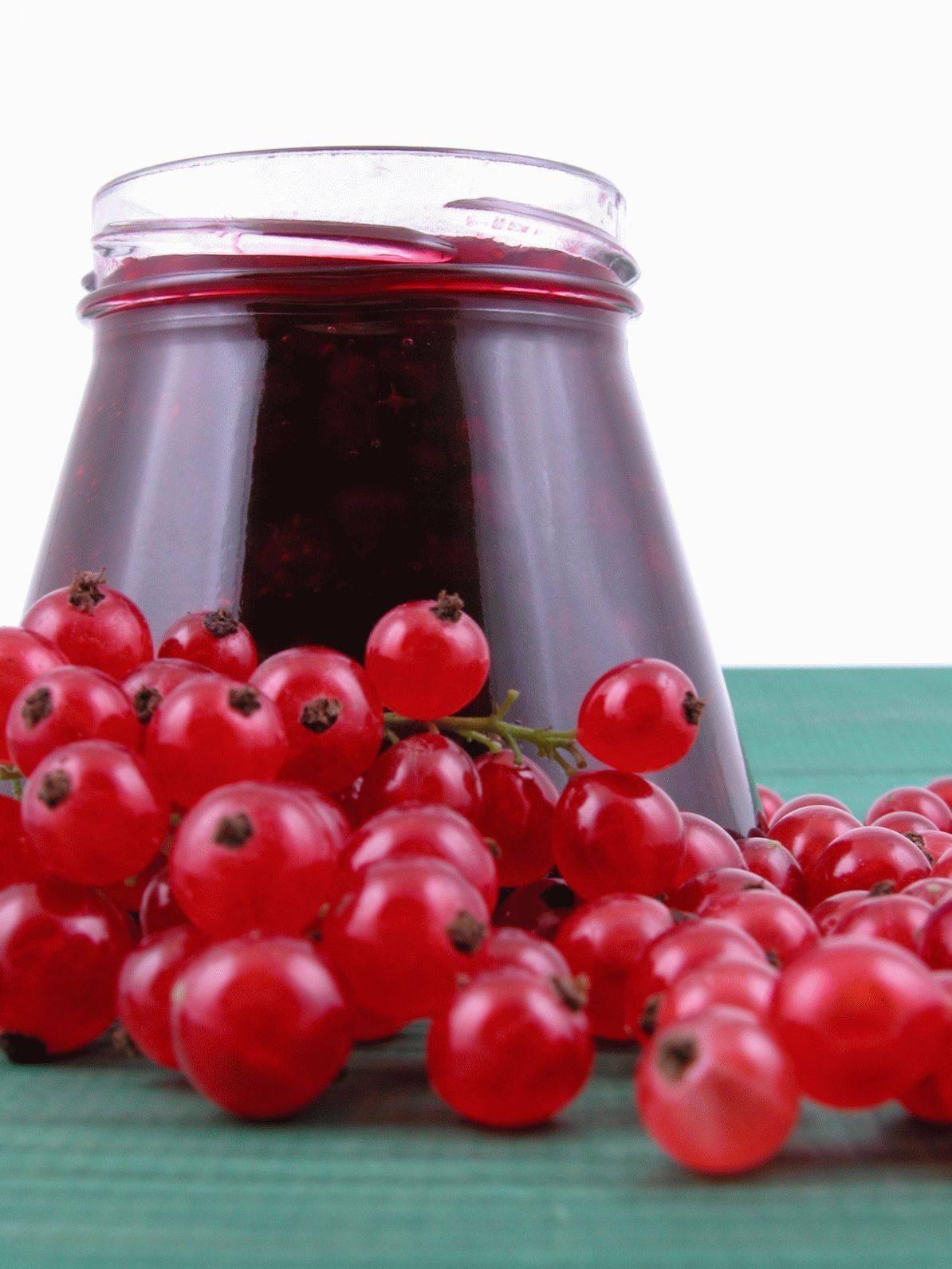 Красная смородина, польза и вред для здоровья человека