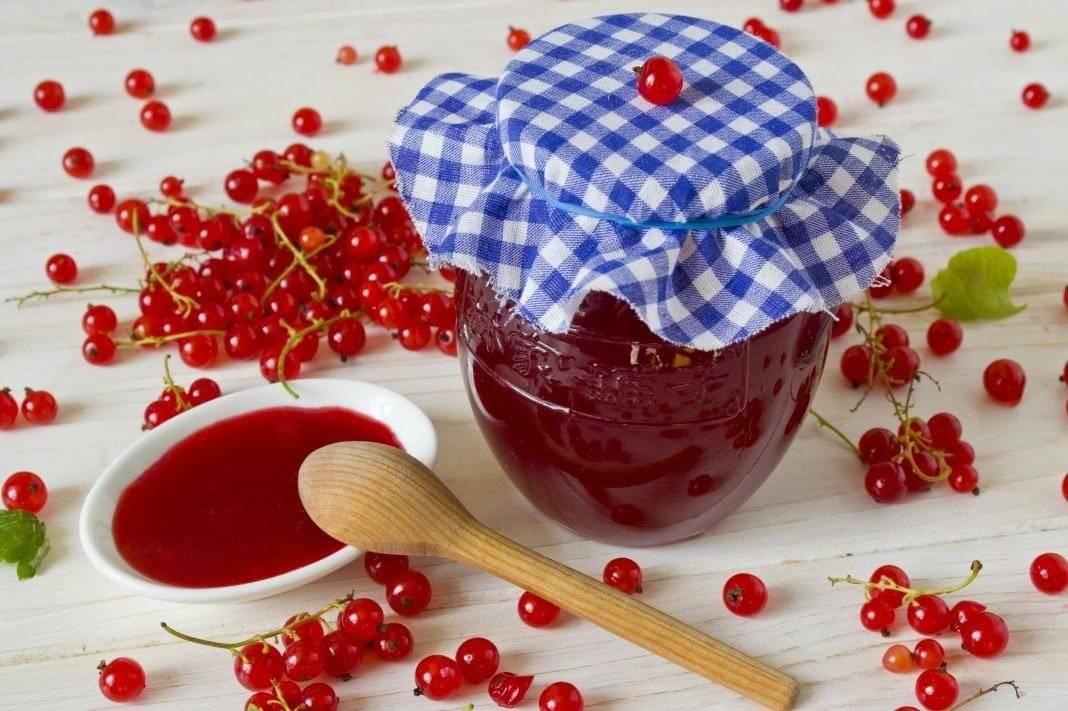 Рецепты варенья из красной смородины