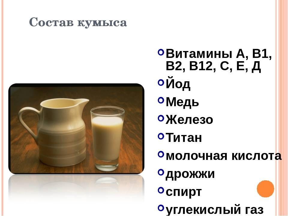 Кумыс: полезные свойства и вред, из чего и как делают напиток