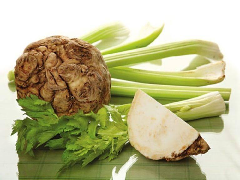Стебель сельдерея — польза и вред черешков растения