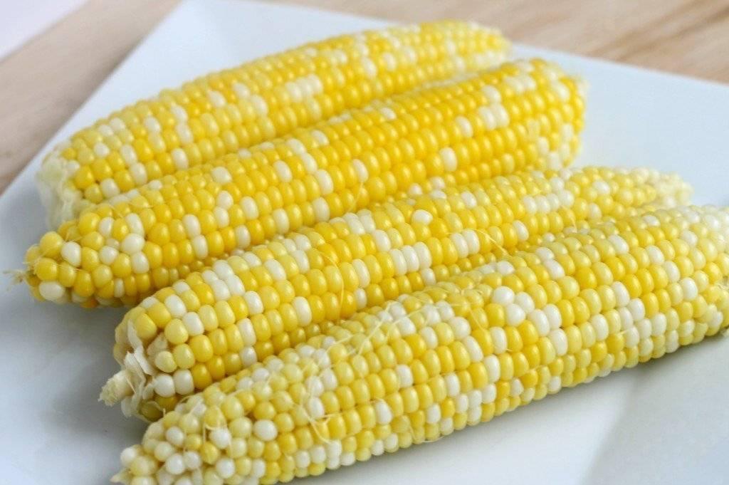 Кукуруза, польза и вред для здоровья человека
