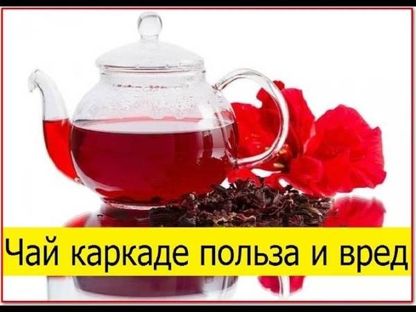 Каркаде: польза и вред, свойства чая суданской розы, противопоказания