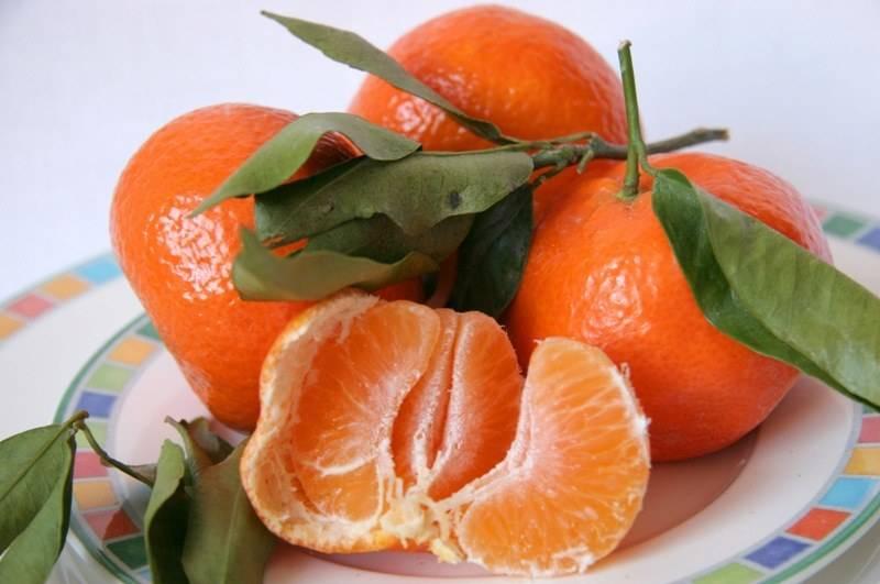 Мандарины: польза и вред для здоровья, калорийность, свойства листьев и кожуры