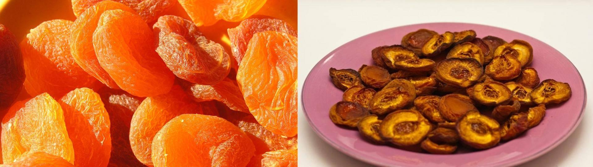 Как правильно хранить в домашних условиях сушеные абрикосы