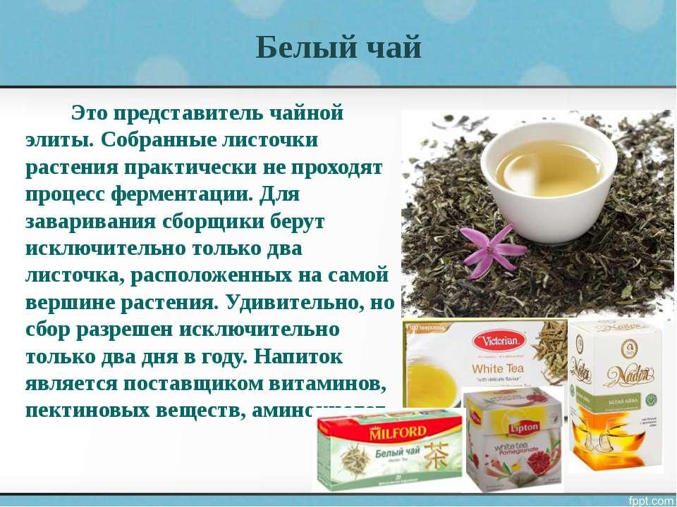 Польза белого чая