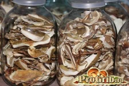 Правильное хранение сушеных грибов в домашних условиях