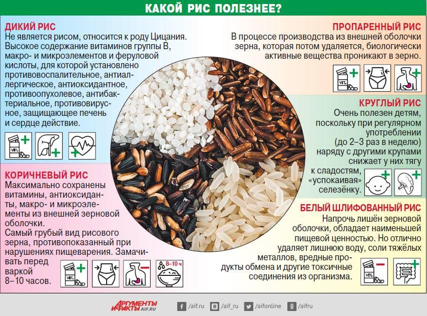Рис: виды, полезные свойства и противопоказания