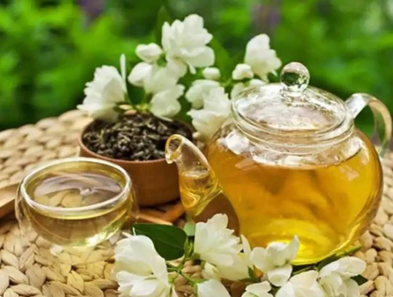 Чай из цветков жасмина польза и вред