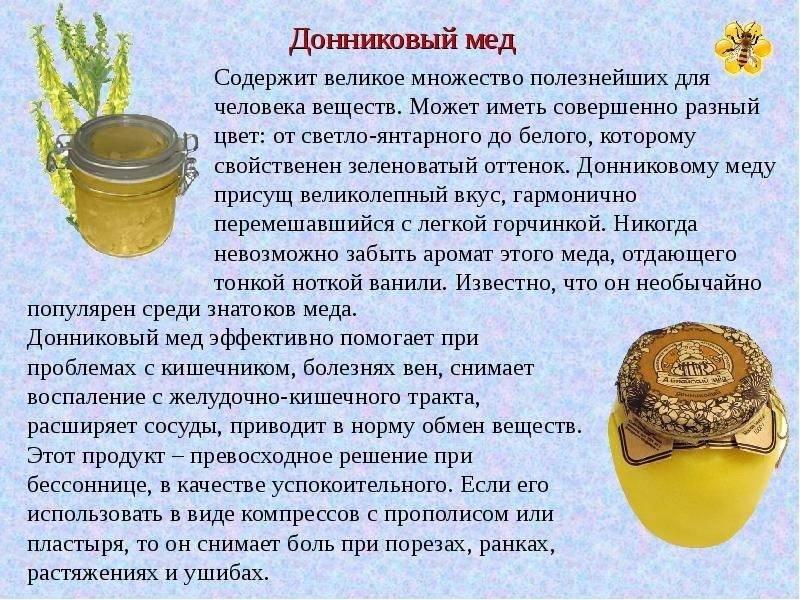 Мед донниковый: лечебные свойства, как выявить подделку