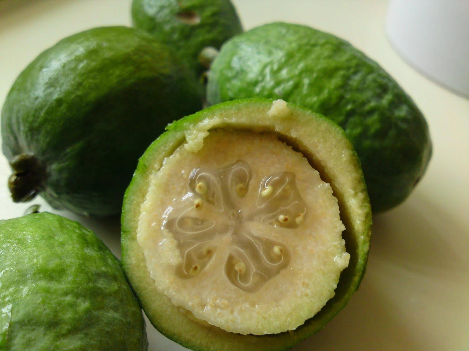 Что такое фейхоа: полезные свойства плодов, листьев и коры растения, противопоказания