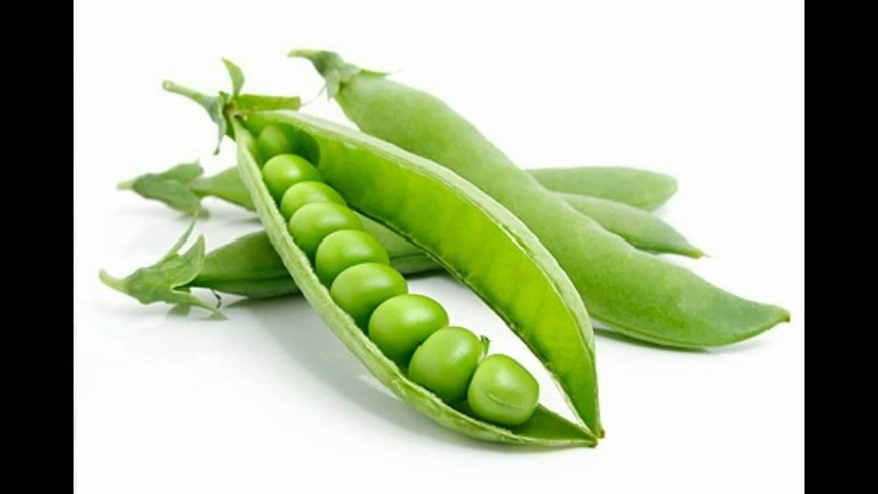 Горох — польза и вред для здоровья, калорийность, свойства. рецепты применения в народной медицине, косметологии, кулинарии