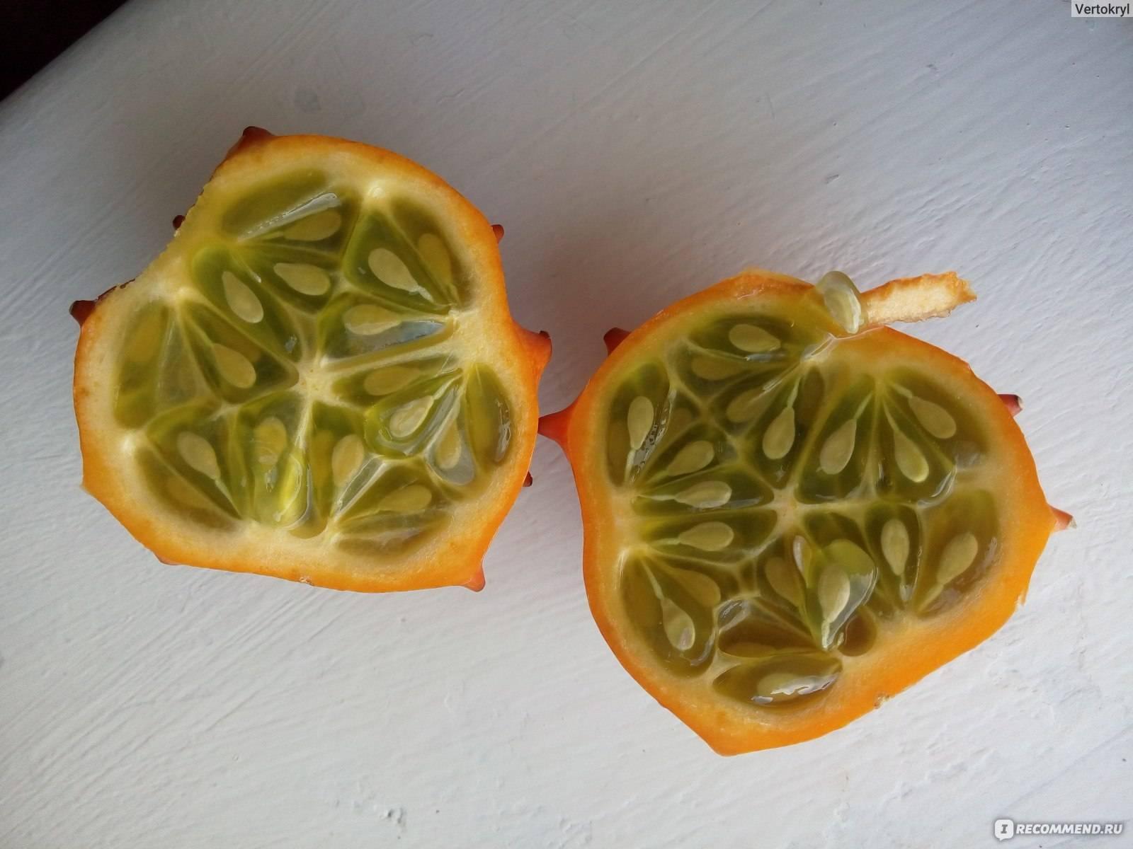 Кивано фрукт: его особенности, советы по употреблению