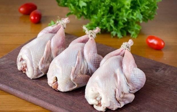 Перепелиное мясо — польза и вред для организма
