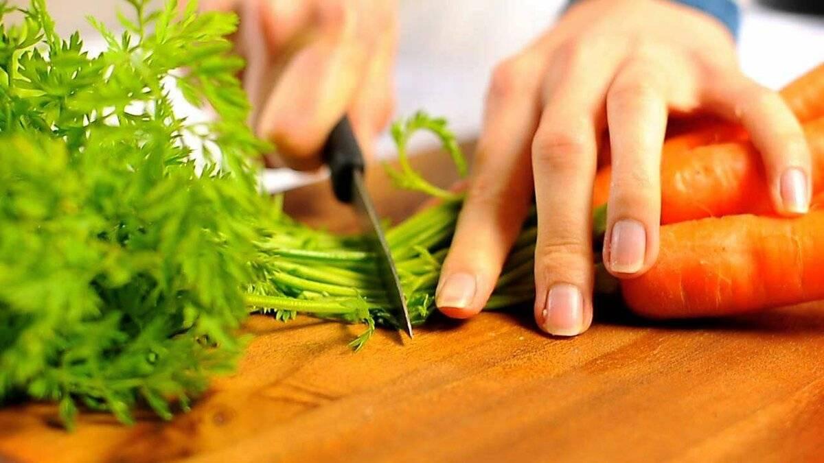 Морковная ботва: отходы или полезный продукт?