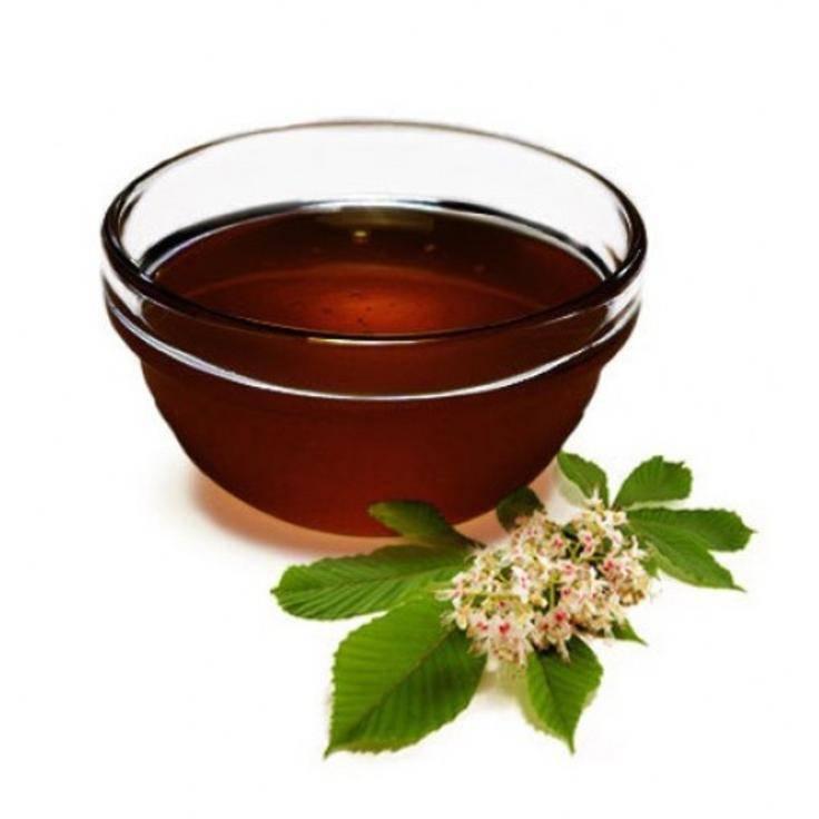Гречишный мед: польза и вред для организма, возможные противопоказания