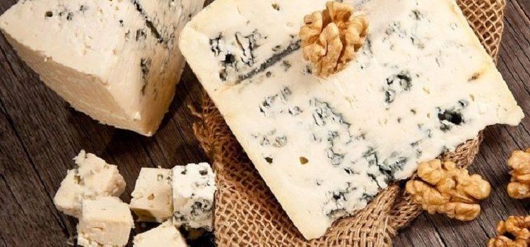 Сыр с плесенью: действительно ли он полезен?