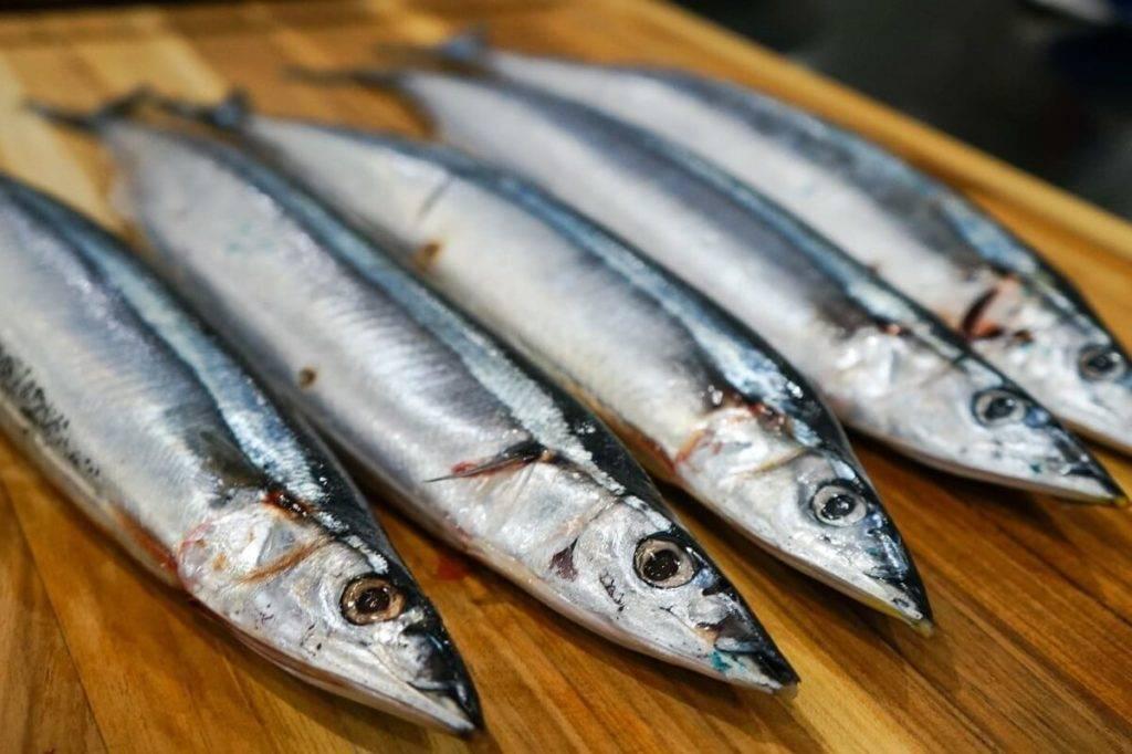 Рыба щука: в чем ценность диетического продукта и какова ее калорийность?