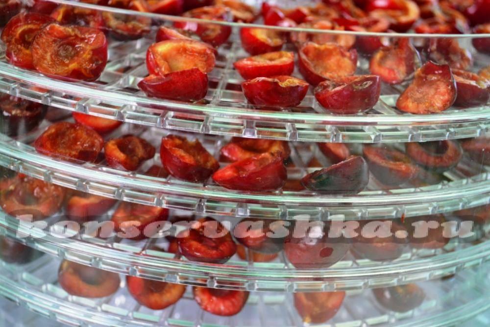 Как сушить фрукты и ягоды правильно