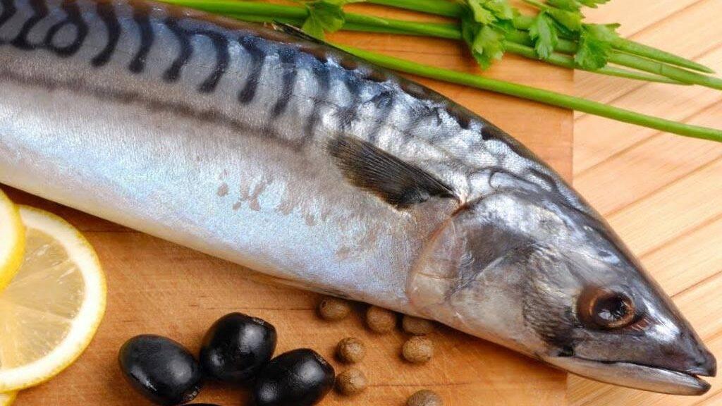 Рыба пеленгас, калорийность и полезные свойства
