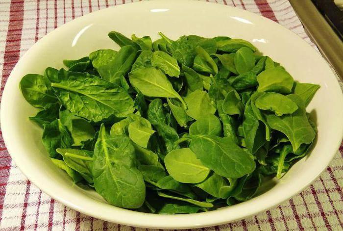 Листовой салат: польза и вред для организма человека