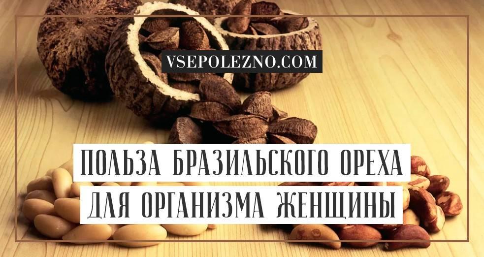 Бразильский орех полезные свойства и противопоказания, применение