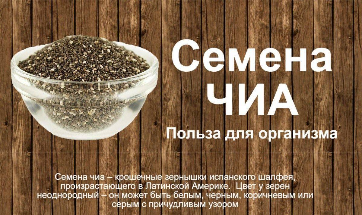 Семена чиа — польза и вред. полезные свойства, отзывы и состав