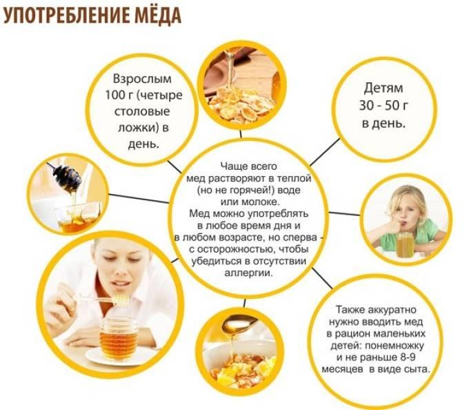 Все о пользе и вреде меда — давайте разбираться!