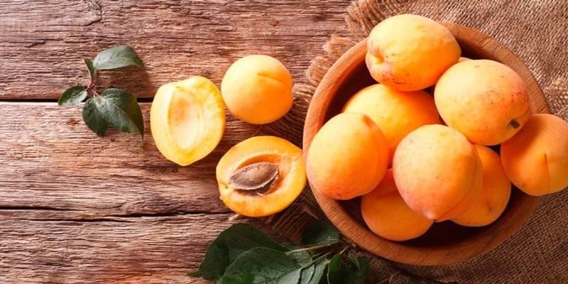 Особенности употребления абрикосов, их польза и вред