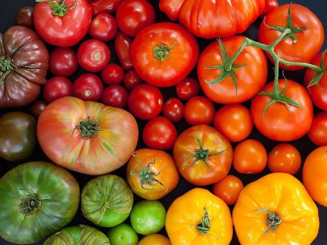 Помидоры черри: свойства, польза, калорийность. помидоры черри в кулинарии