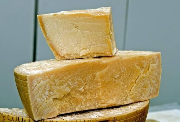 Чем полезен сыр пармезан для здоровья: химический состав, сколько калорий, вред