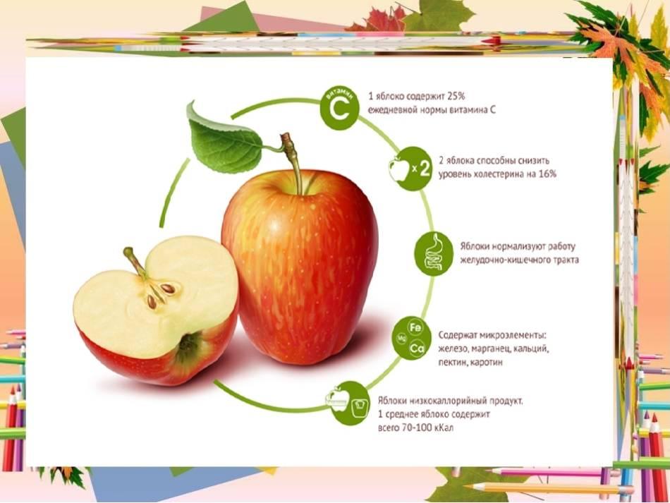 Употребление яблок при грудном вскармливании - можно ли, с какого месяца и в каком виде?